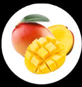 Mango AGRITRADE
